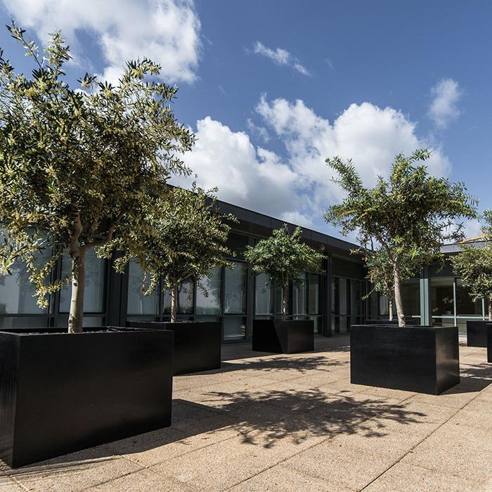 Centre IVISION à Rennes